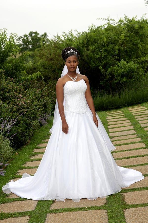 Bride Outside stock photos
