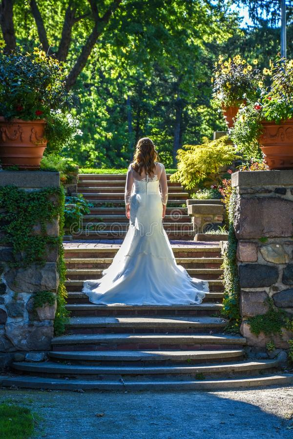 Bride, Photograph, Woman, Dress stock image