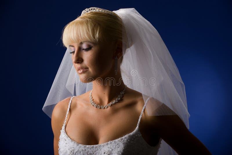 bride portrait стоковая фотография rf