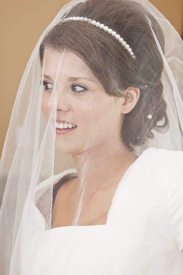 Download Bride portrait stock image. Image of human, pleasure - 27127025