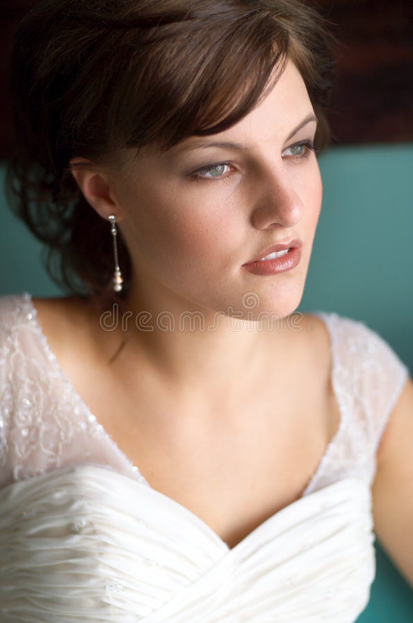Download Bride Portrait stock photo. Image of portrait, make, beauty - 556972