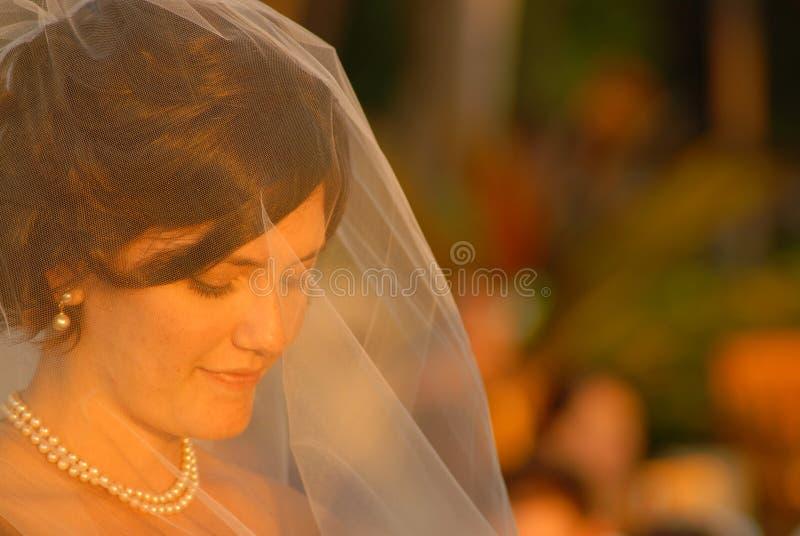Bride in prayer stock image