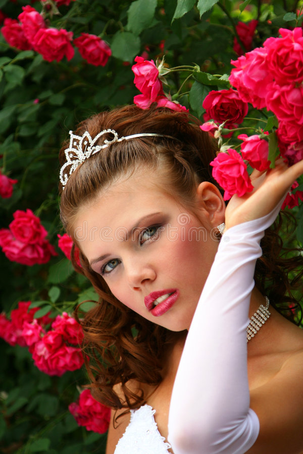 Download Bride in the Red Roses stock photo. Image of bride, smile - 2596118
