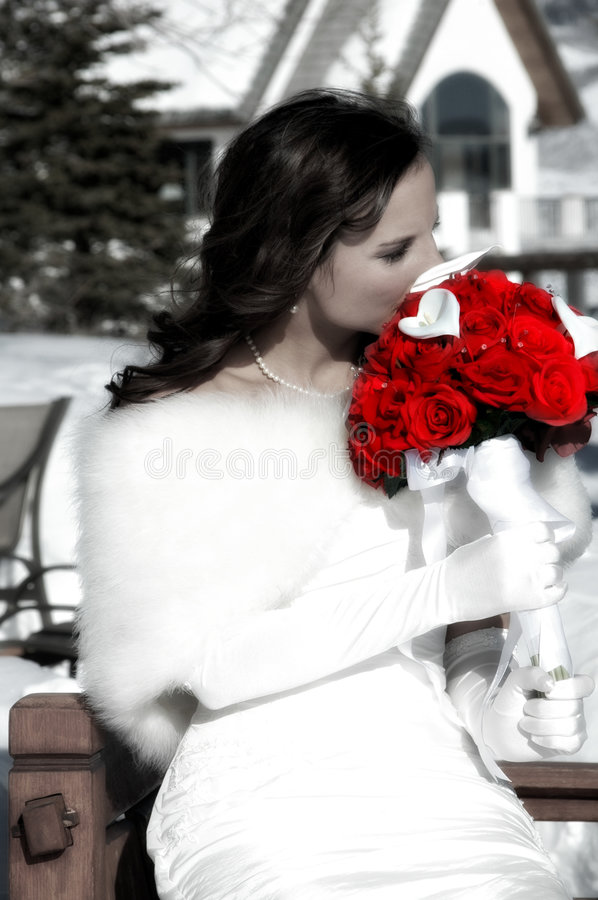 Bride and Red Roses. Black and white image of a bride in snow with hand tinted red roses stock photography