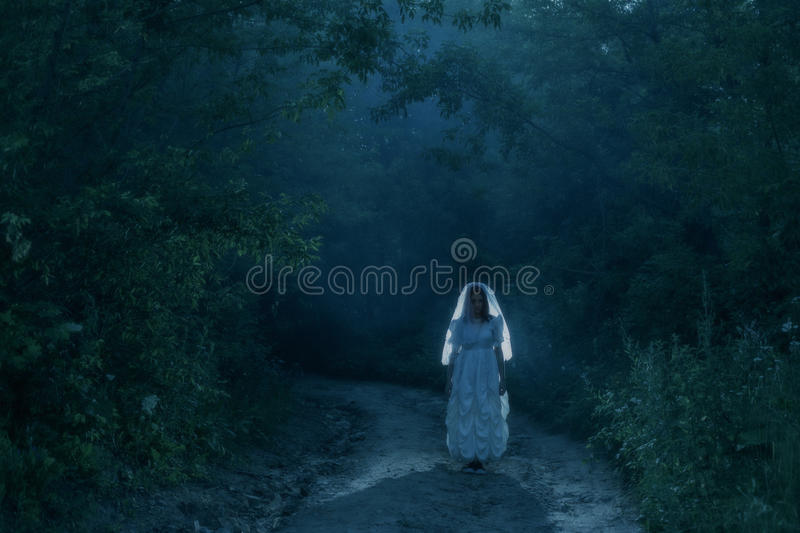 Bride`s ghost in night forest. Bride`s ghost in the night forest stock images