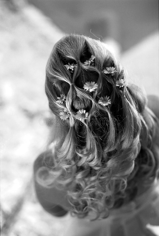 Free Bride S Hair Royalty Free Stock Photos - 800788
