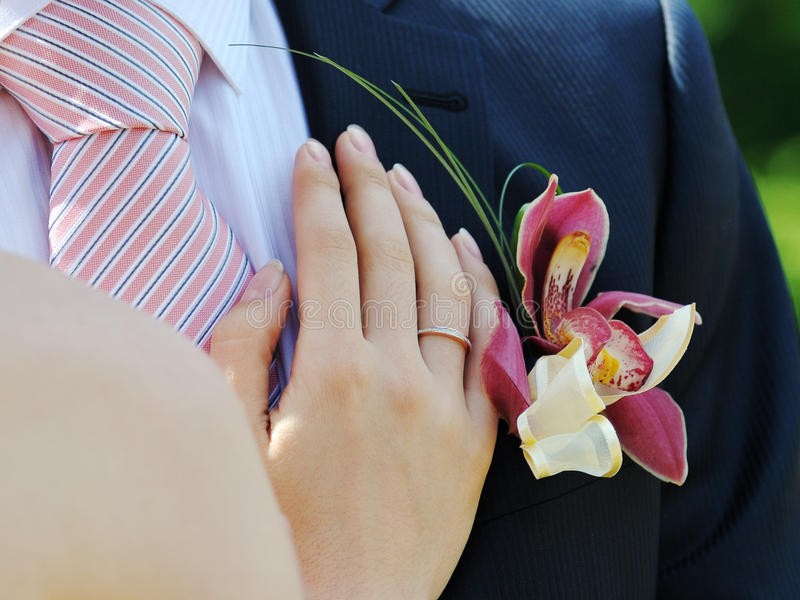 Bride and groom hands closeup royalty free stock image