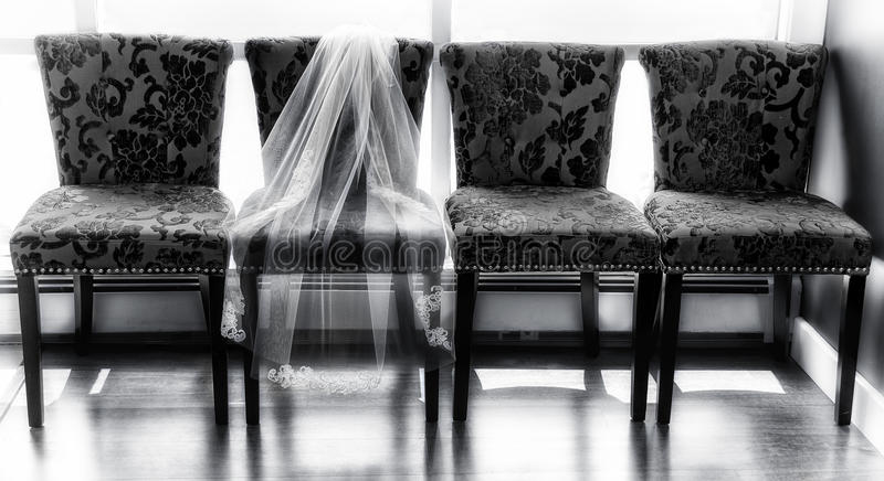 The Bride's Veil stock photography
