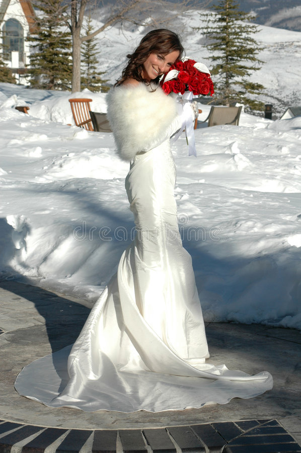Bride in the Snow. Beautiful woman in white fur trimmed wedding gown holding red roses outside in the snow stock photography