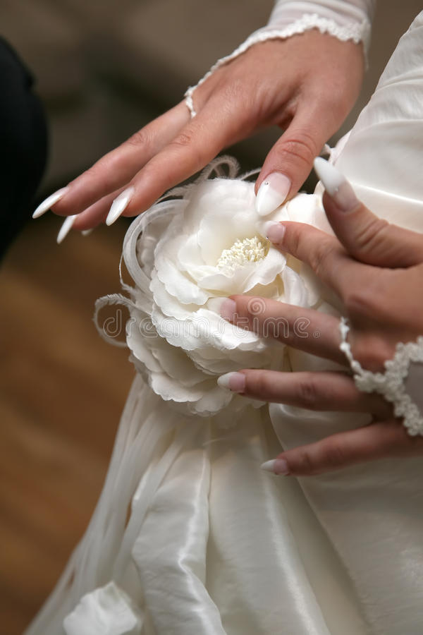Bride straightens the flower on your dress. The bride straightens the flower on your dress stock photos