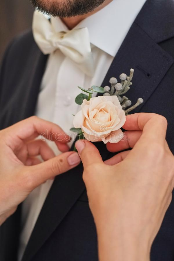 The bride straightens the groom's boutonniere pink rose. The bride straightens the groom's boutonniere light pink rose royalty free stock images