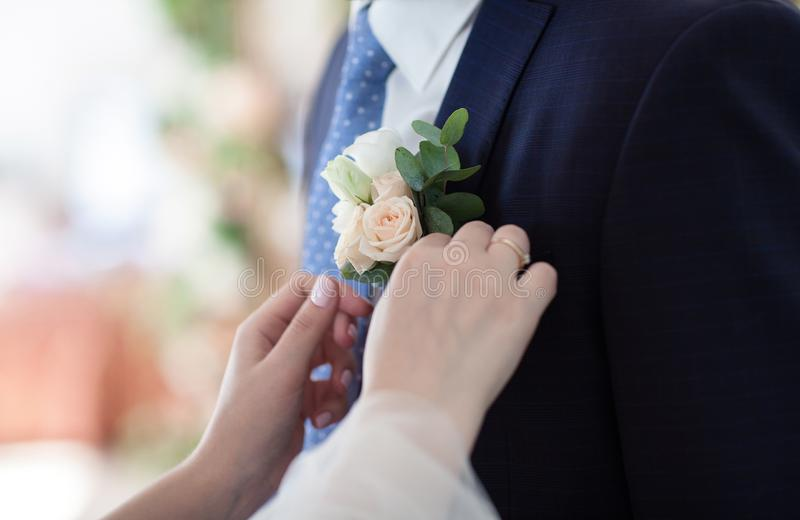 The bride straightens the groom`s boutonniere. No faces. The bride straightens the groom`s boutonniere. Horizontal frame without faces stock photography