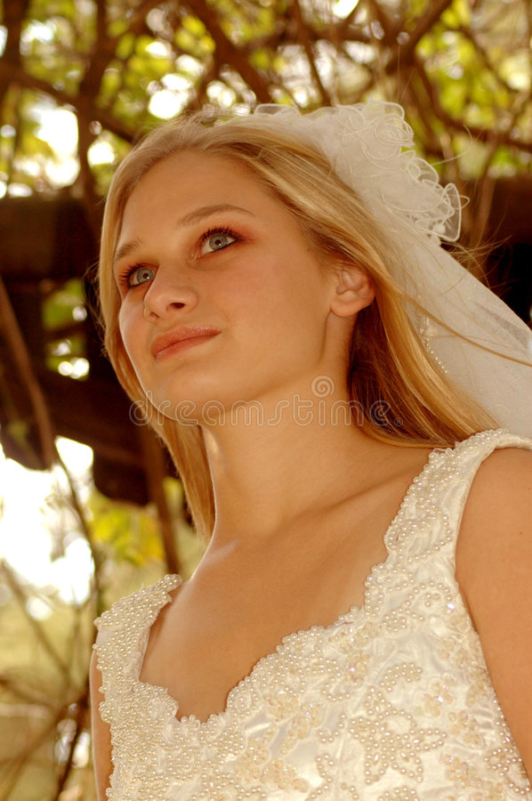 Download Bride thinking stock photo. Image of gaze, gorgeous, anger - 7097218
