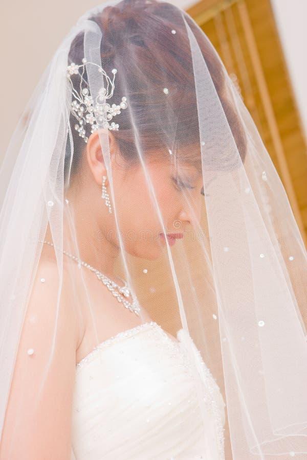 Download Bride to be hidden in veil stock image. Image of beautiful - 10094313