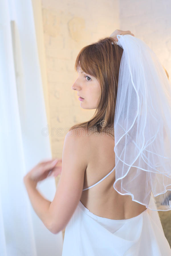 Download Bride in Veil stock photo. Image of cheerful, atelier - 22335918