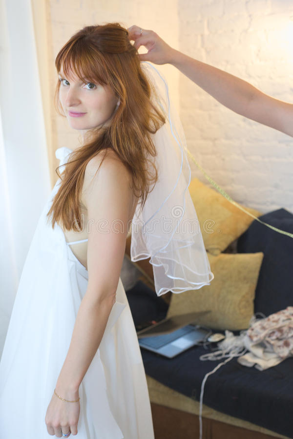 Download Bride in Veil stock image. Image of hand, caucasian, beauty - 22731015
