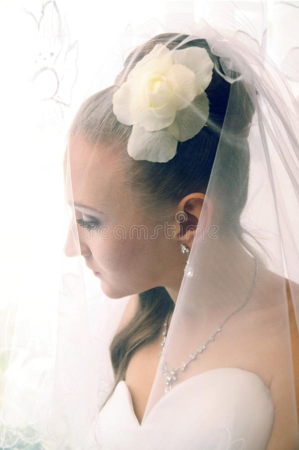 Download Bride in veil stock photo. Image of formalwear, marriage - 27728430