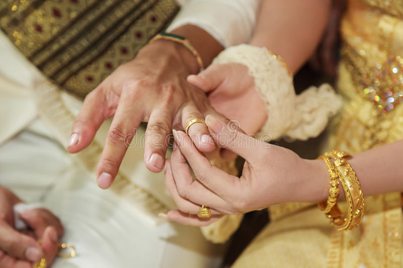Bride Wearing Wedding Ring For Her Groom Hand Stock Photo Image of