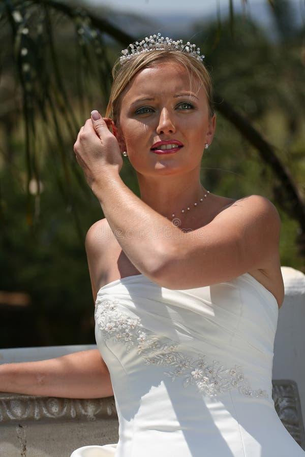 Download Bride in wedding dress stock image. Image of bridal, head - 2382215