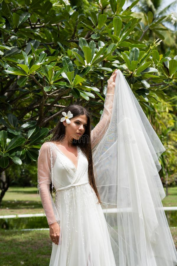 A bride in a white dress with an exotic flower in her hair is standing under a flowering tropical tree stock photography