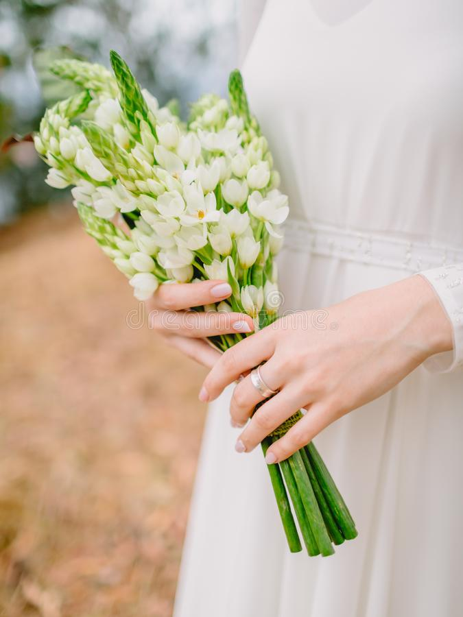 Bride in white dress holds a bouquet with white flowers. Wedding day and ceremony. Bride in white dress holds a bouquet with white flowers. Wedding day royalty free stock photos
