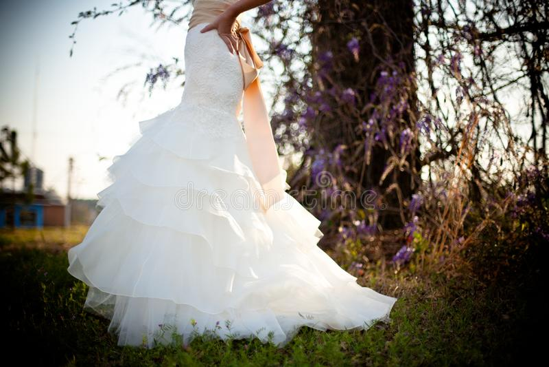 Bride White Wedding Dress Outdoors Green Grass Wisteria Vines royalty free stock photos