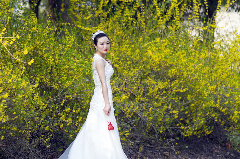A bride with white wedding dress stand by golden jasmine flowers download a bride with white wedding dress stand by golden jasmine flowers stock image image mightylinksfo