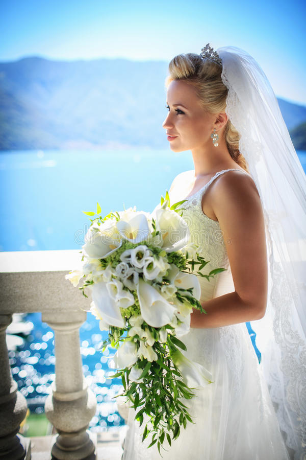 Download Bride Stock Photography - Image: 35109812