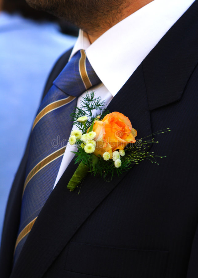 BRIDEGROOM royalty free stock image