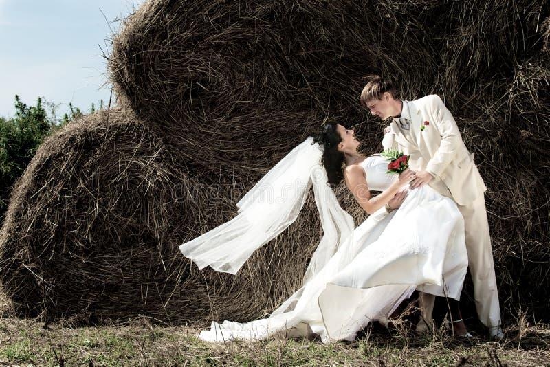 Download Bridegroom and bride stock image. Image of newlyweds - 11243155