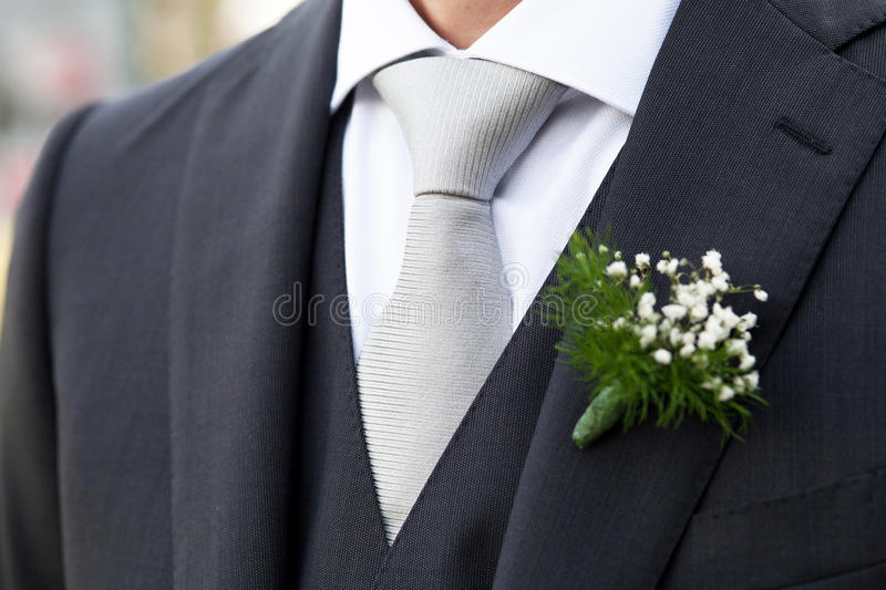 Groom. Bridegroom with elegant black dress royalty free stock photo