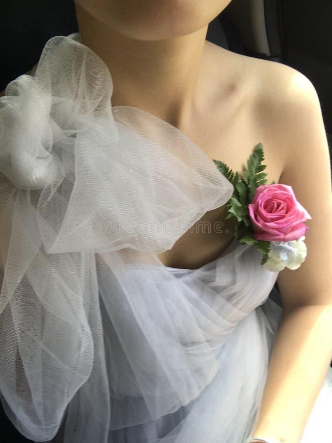 Bridemaide stock photos