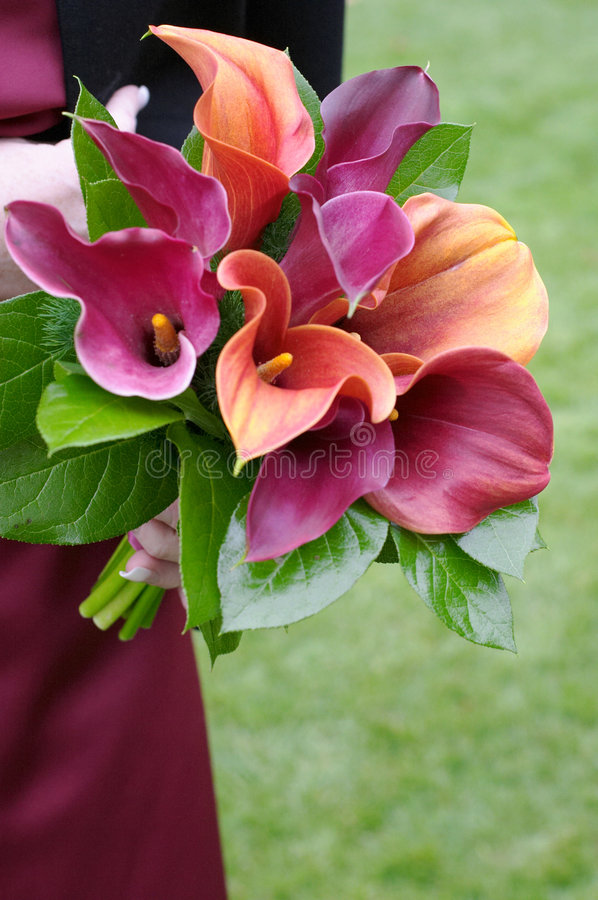 Download Bridesmaid Holding Bouquet stock image. Image of married - 7445089
