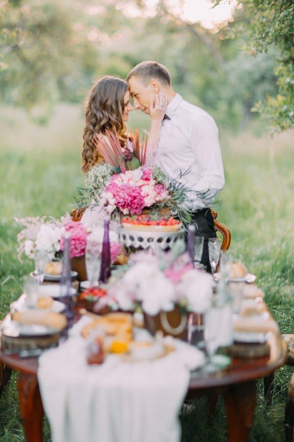 Bridesmaid petting сторона самого лучшего человека на предпосылке запачканной таблицы вполне еды расположенной в солнечном стоковое фото rf