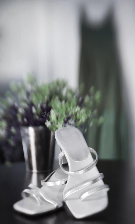 Download Bridesmaid's Dress stock image. Image of gown, heel, elegant - 5517041