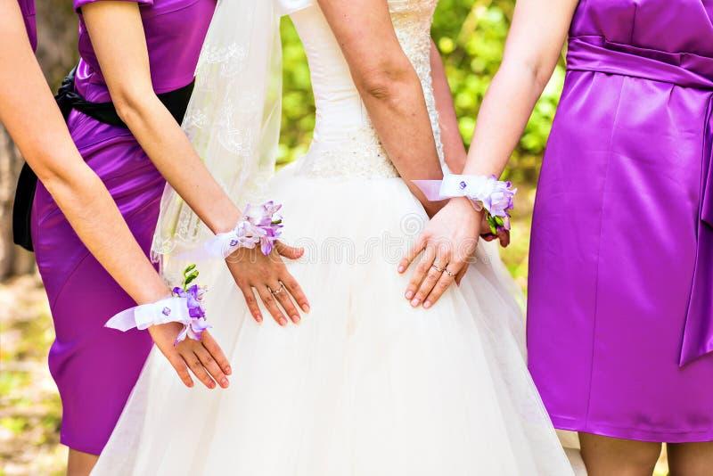 bridesmaids fotos de stock royalty free
