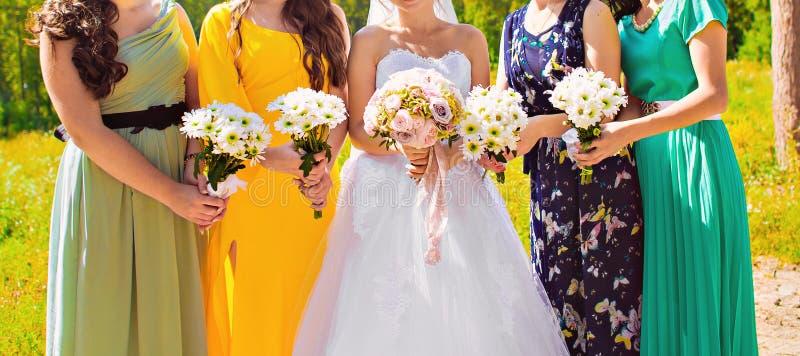bridesmaids fotografia de stock royalty free
