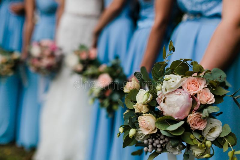 Download Bridesmaids in blue stock image. Image of back, happy - 107858491