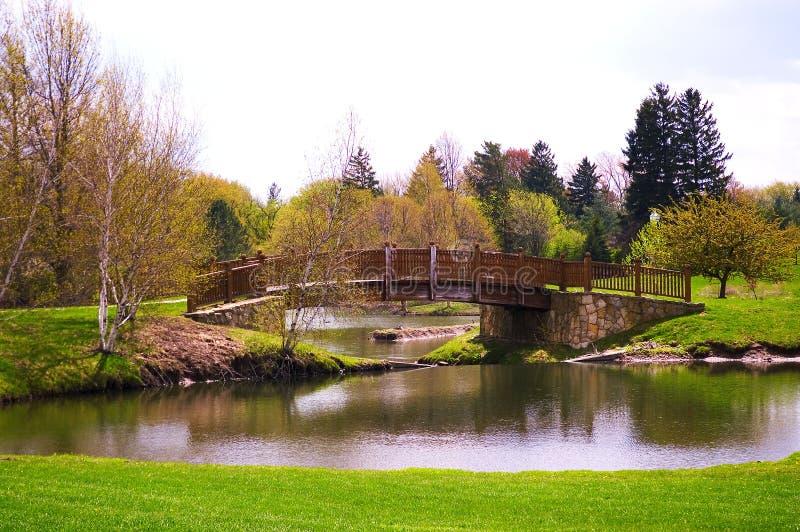 Download Bridge stock photo. Image of park, spring, water, wooden - 115280