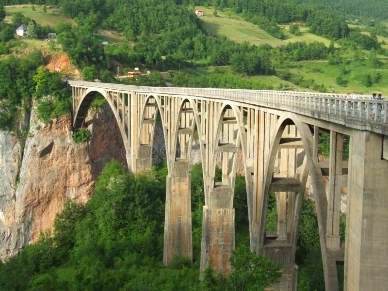 Bridge. On the Tara river in Montenegro stock photos