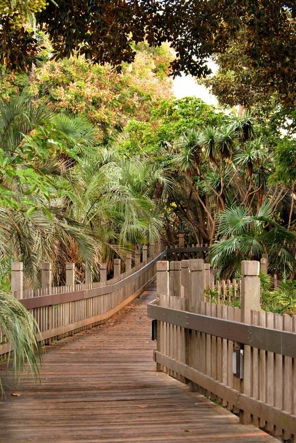 Download A bridge across stock photo. Image of bridge, foliage - 28981474