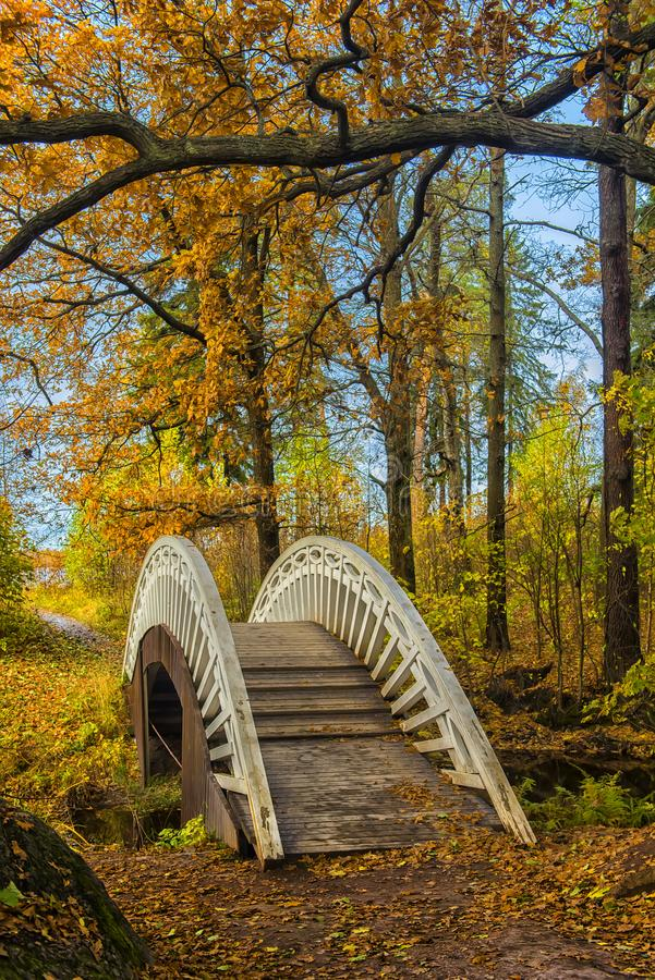 Download Bridge Across The Canal In The Autumn Park Stock Photo - Image of nature, karelia: 102614816