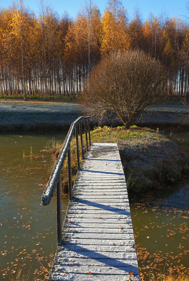 Bridge across the lake. royalty free stock photography