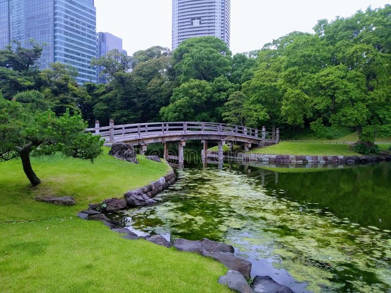 Japanese garden bridge view in Tokyo royalty free stock photography