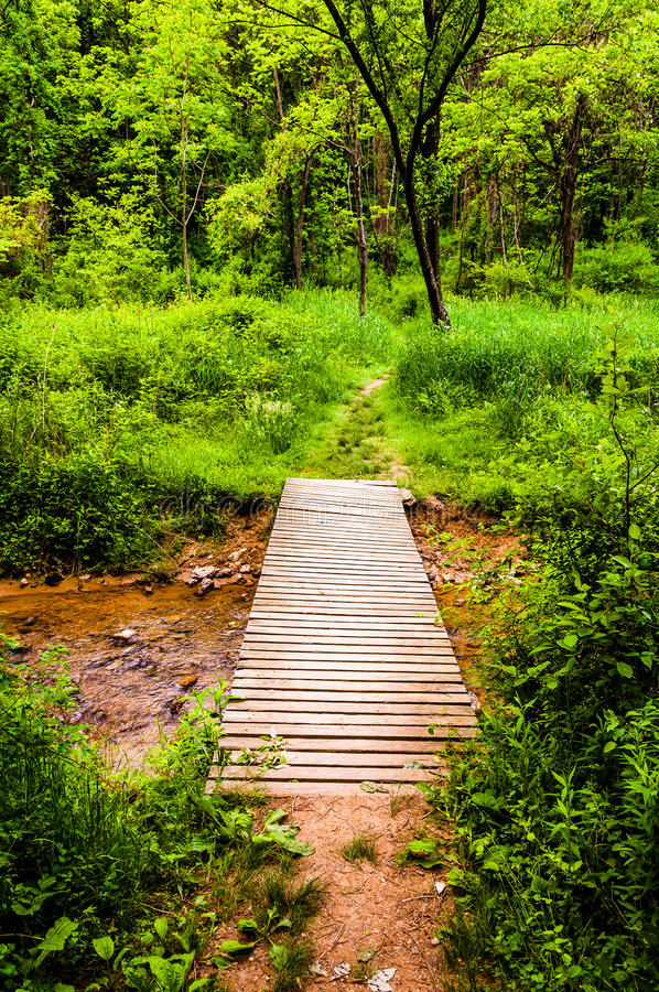 Bridge along a trail in a lush forest in Codorus State Park, Pen royalty free stock photography