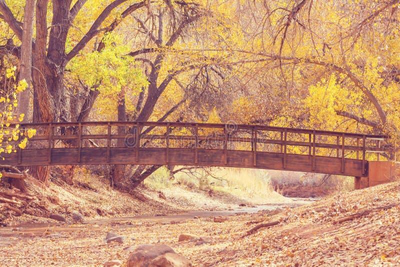 Bridge in autumn forest stock photos