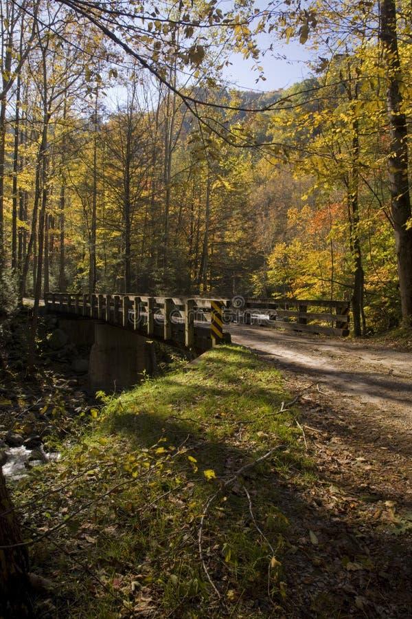 Bridge, Autumn, Tremont, Smokies NP royalty free stock image