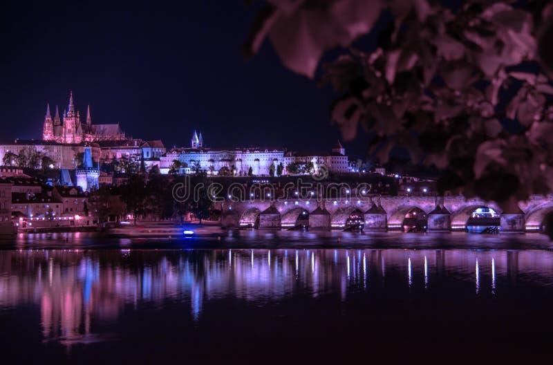 Bridge, Buildings, Castle royalty free stock images