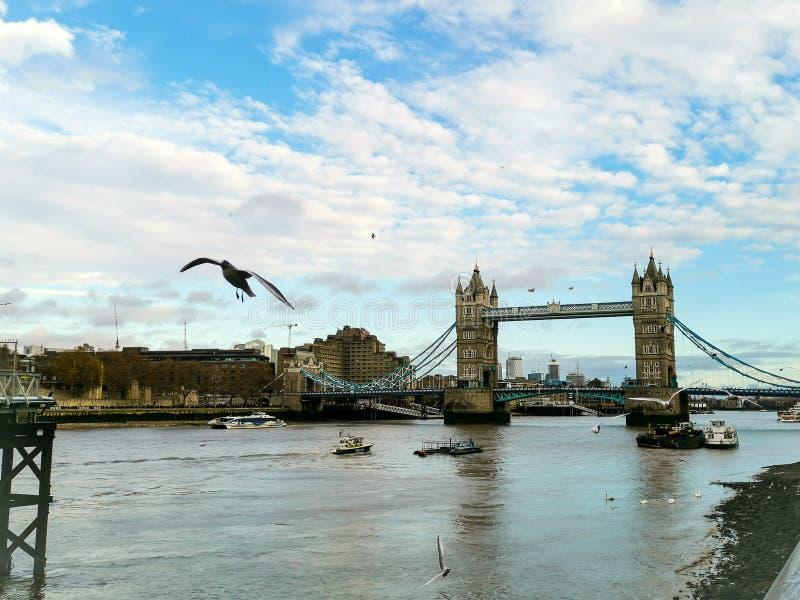 bridge det london tornet arkivbild