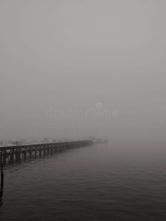Foggy stock images